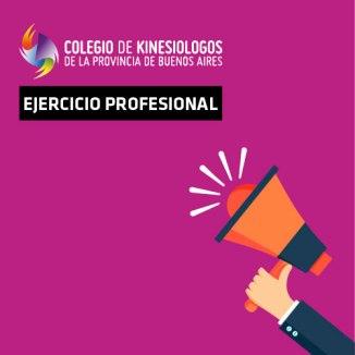 EJERCICIO-PROFESIONAL (1)